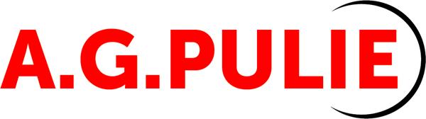AGPulie